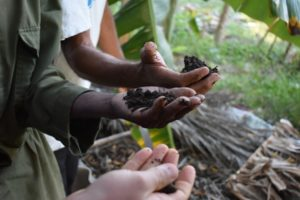 A Permaculture Journey in Cuba Part II