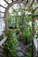 Wild Green Garden Consulting
